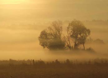 Mist 31 by Nivienne