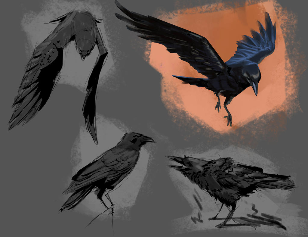 Crows Painting Study by gabrielrubio