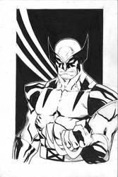 Wolverine by Kid-Destructo