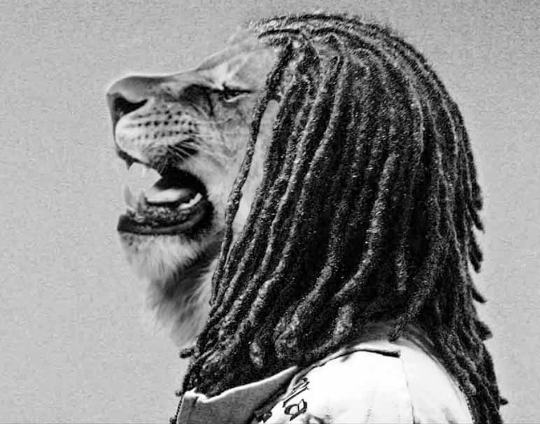 Lion with dreads tattoo drawings - photo#40