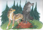 Wolfsilvermoon: Commission