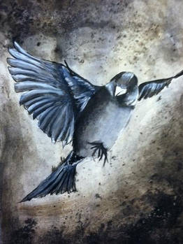 Quick Sparrow