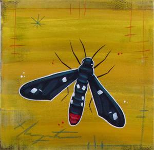 Polka-Dot Wasp Moth