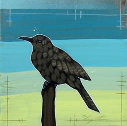 Brown Woodpecker