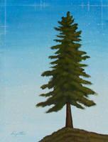 Spruce by TetraModal