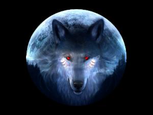 TJ-Wolf's Profile Picture
