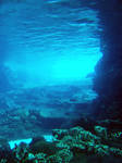 Underwater Stock 1