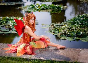 Autumn's fairy 5