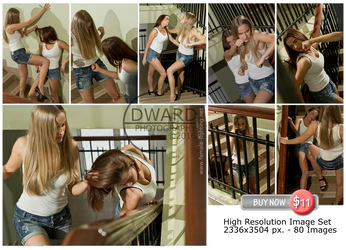 Catfight on stairs -80 High resolution images -$11 by Edward-Photography