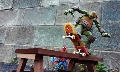 Turtle Grind