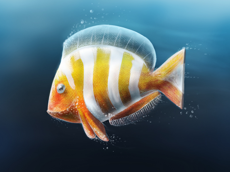 Tropical Fish by Giallo86