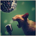 CAT DISCO  -animated - by hetorakelt
