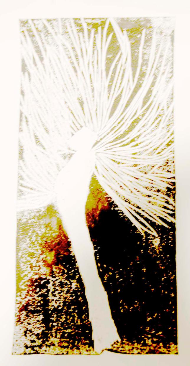 Angel by Ealin