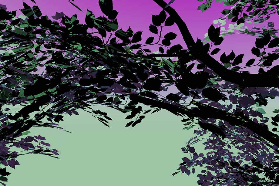 Tree by Ealin