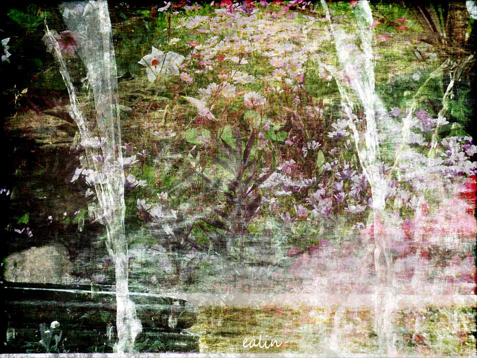 Garden2 by Ealin
