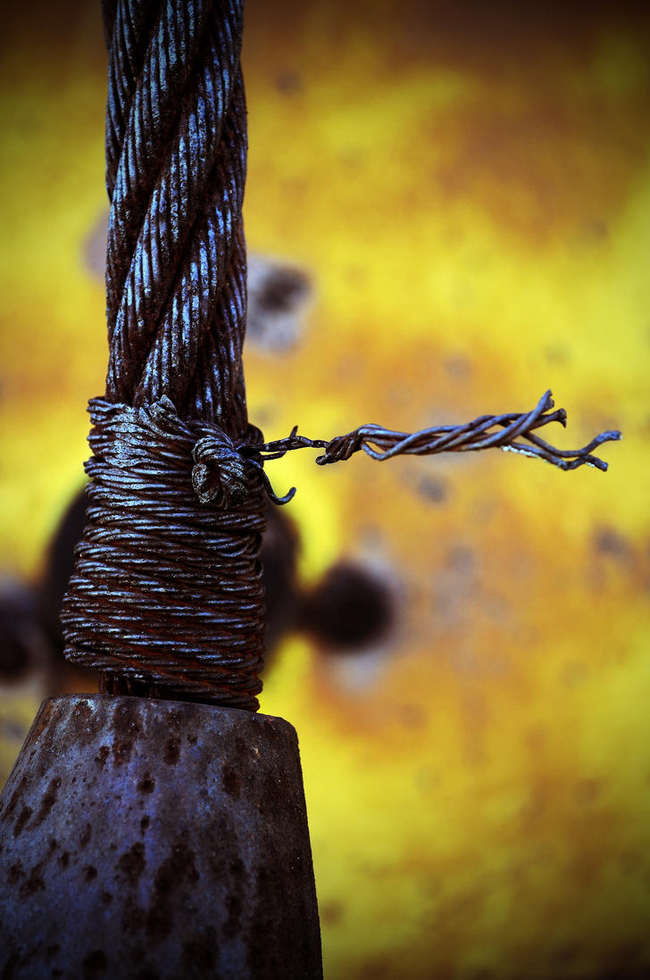 Rusted Wire by PAlisauskas