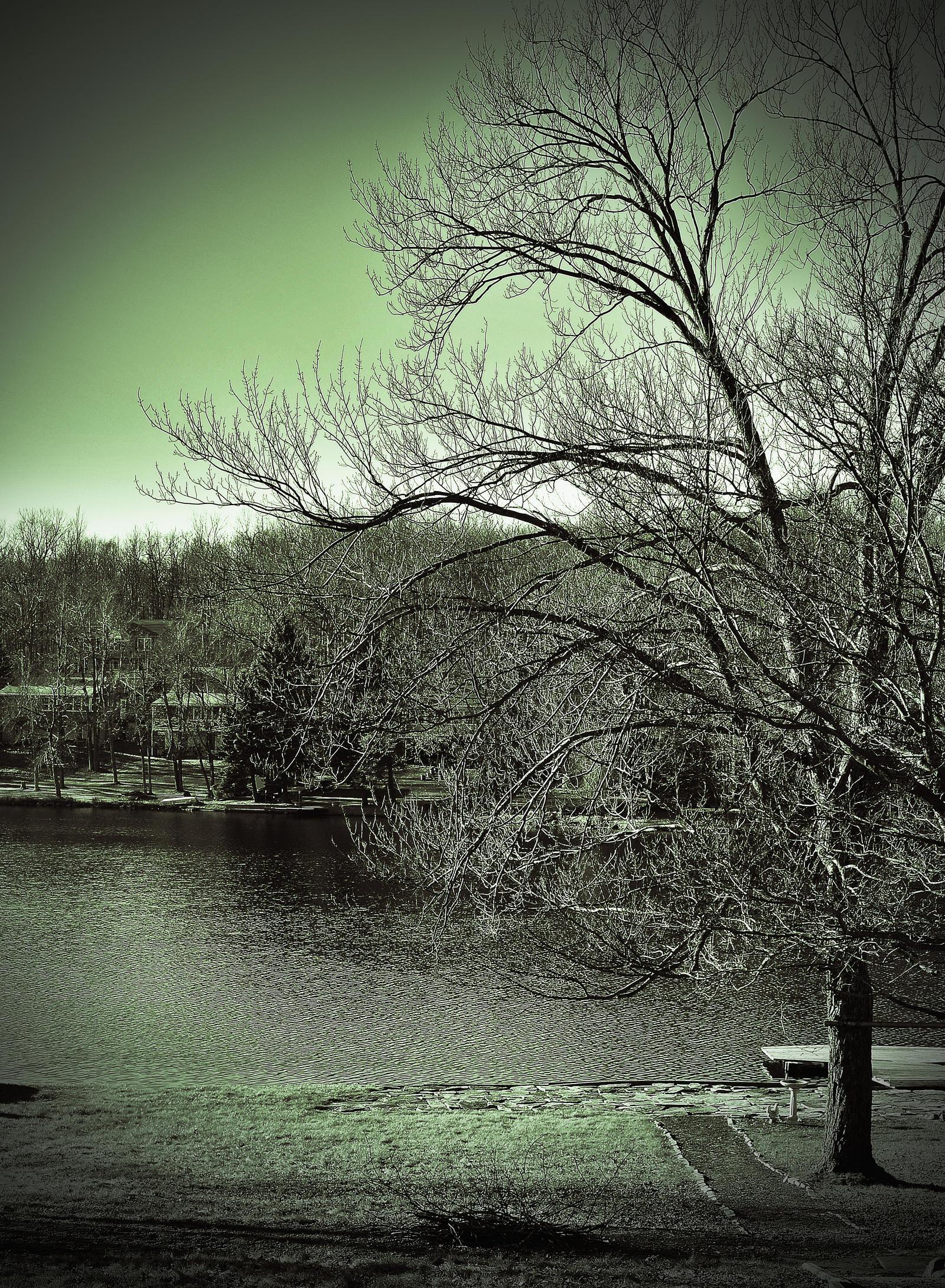 Pocono House side/backyard lake by PAlisauskas