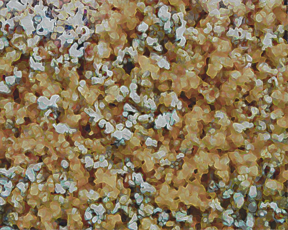 popcorn by ChaelMontgomery