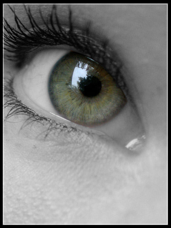 Eye by emeliten
