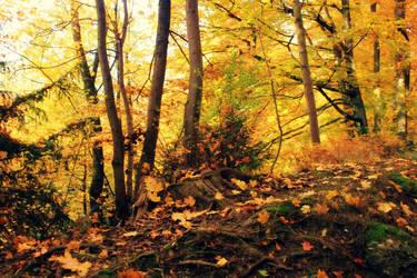 Autumn V