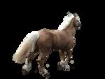 Pre Cut Horse Two