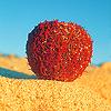 Icon: Miscellaneous: Beach Stuff by bakaprincess85