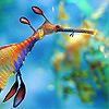 Icon: Miscellaneous: Ocean Stuff by bakaprincess85