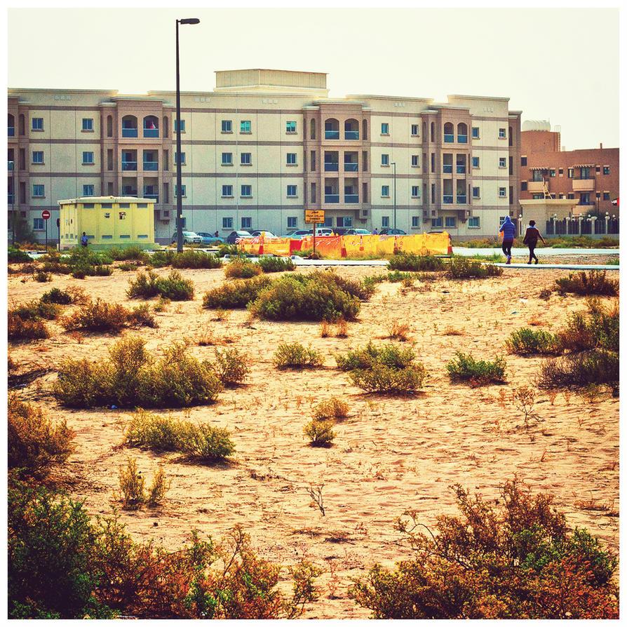 Desert Shrubs by MARX77