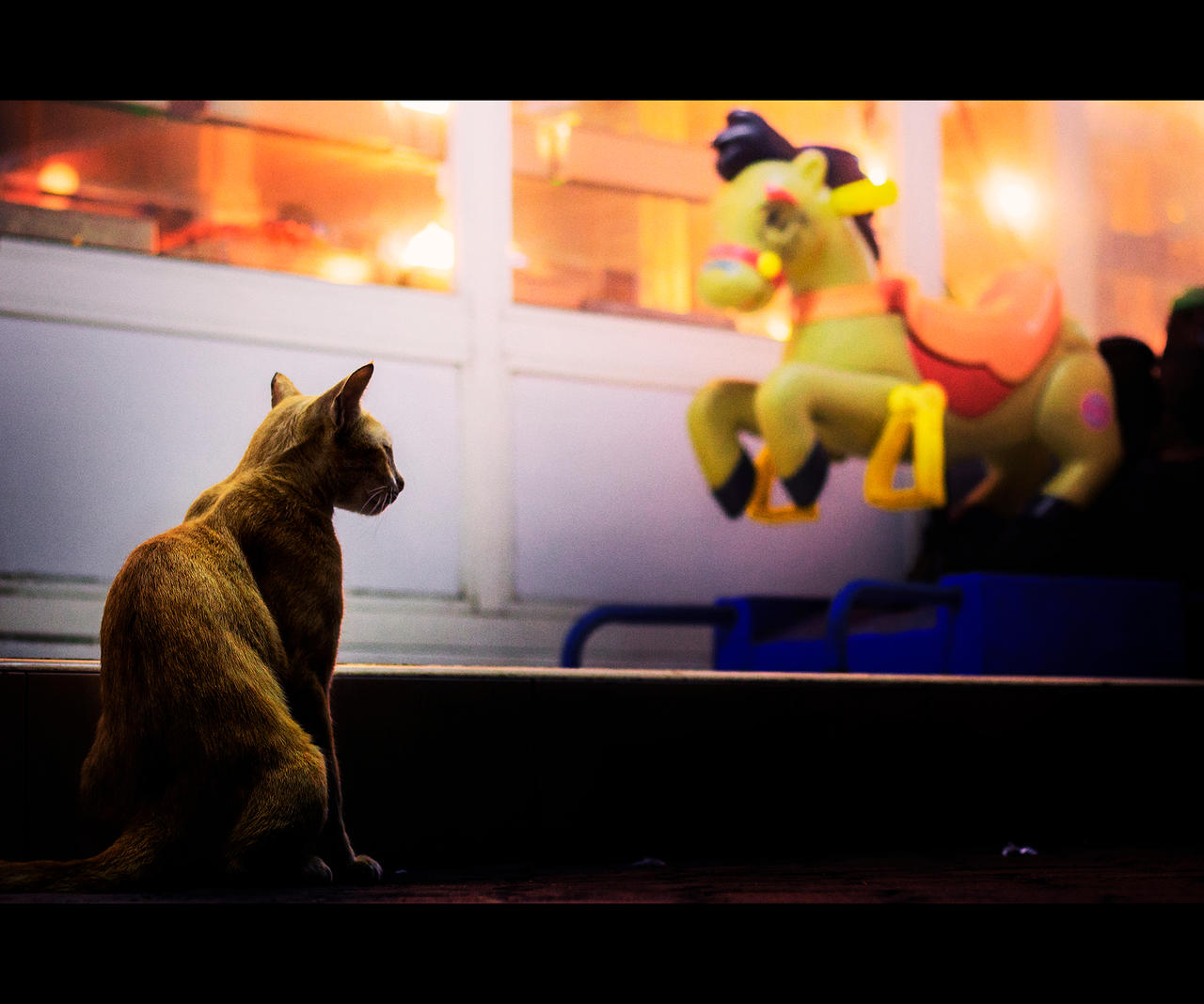 Urban Cats - 75 by MARX77