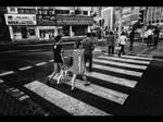 Crossing Stripes