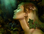 Elfe by Miesis
