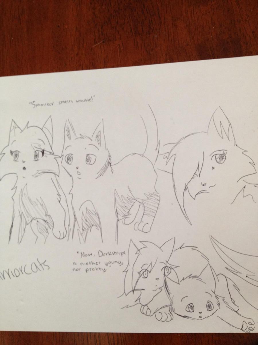 Graypaw and Firepaw - ssswarriorcats by AshtailXMoonfrost