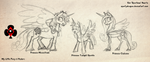 Pony Princess Size Comparison by spartydragon