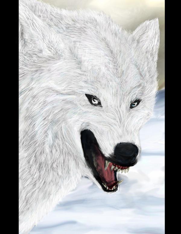 Stand off detailshot by Wolfstarsilvestris