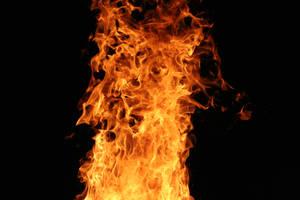 fire by lngl