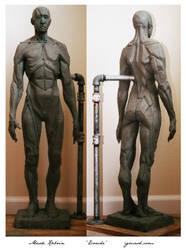 Ecorche body study by Mr-Vicious