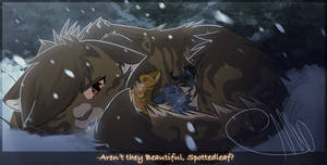 {WC}Aren't they beautiful, Spottedleaf?