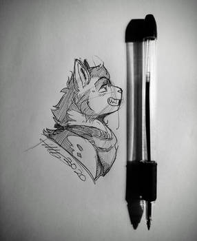 Pen and Product