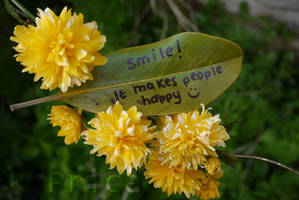 Smile by Rhiallom