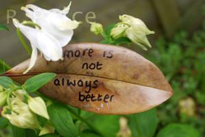 No More by Rhiallom