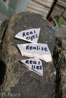 Real Eyes by Rhiallom
