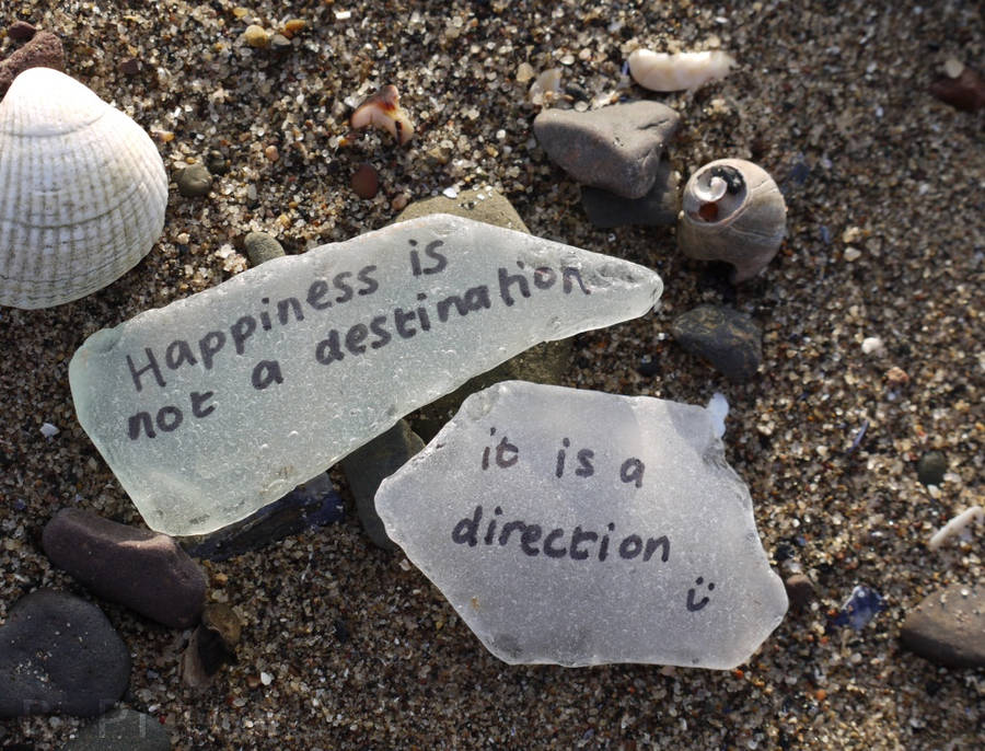 The Path To Happiness by Rhiallom