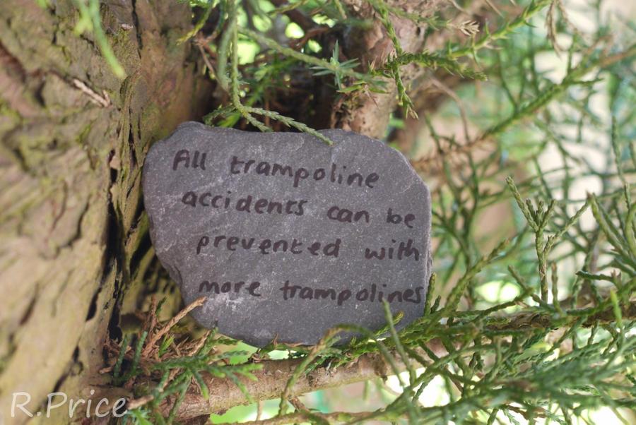 Trampoline Prevention by Rhiallom