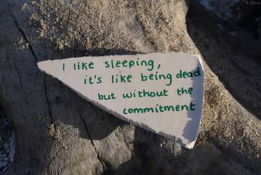 The Joy Of Sleeping by Rhiallom