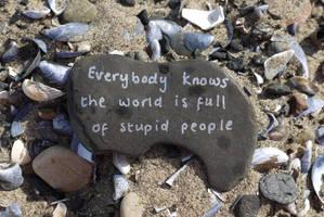 A World of Stupid by Rhiallom