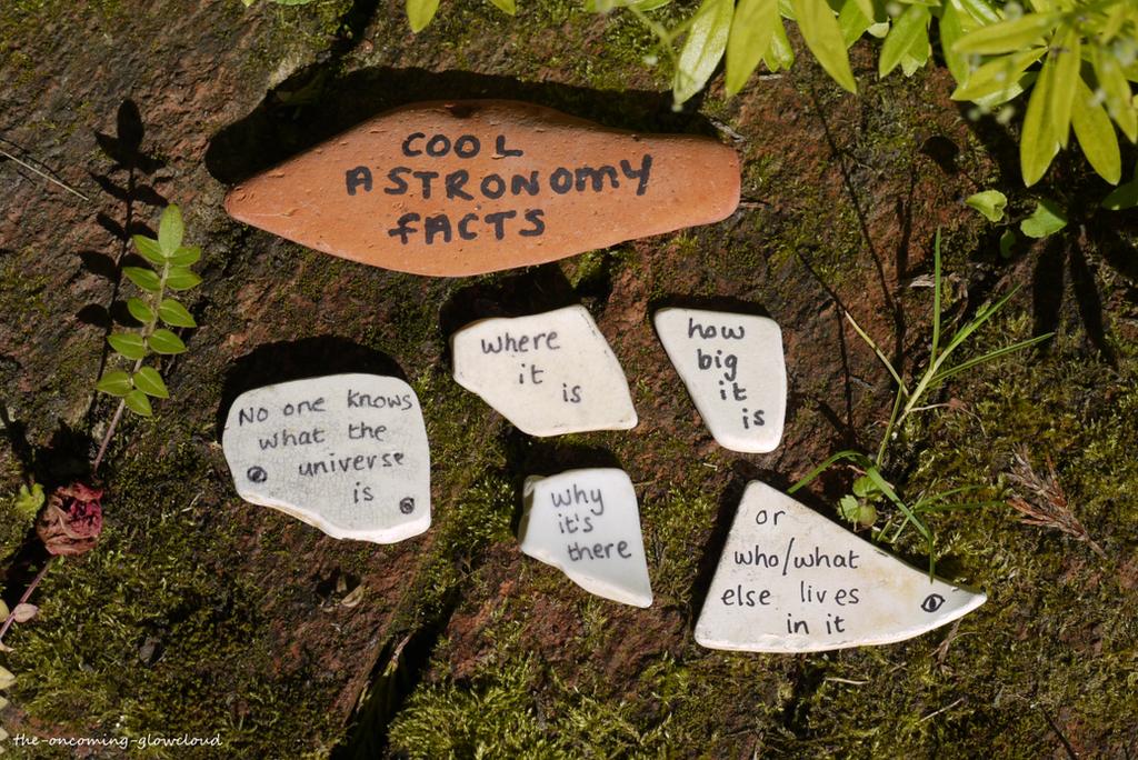 Children's Fun Fact Science Corner by Rhiallom