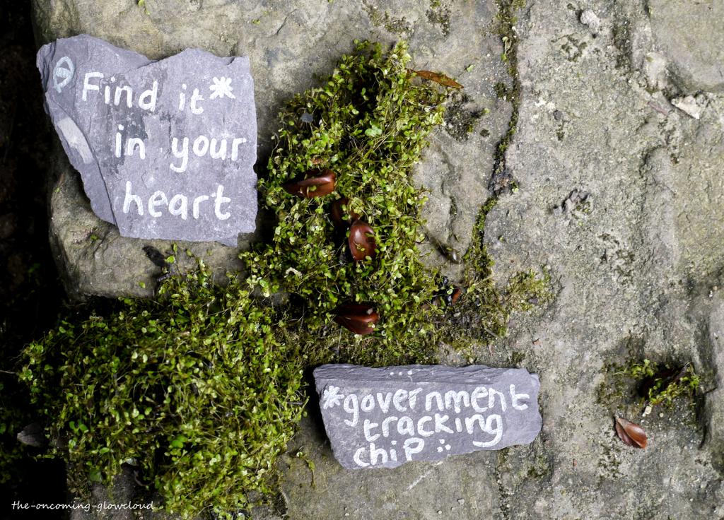 Find It In Your Heart by Rhiallom