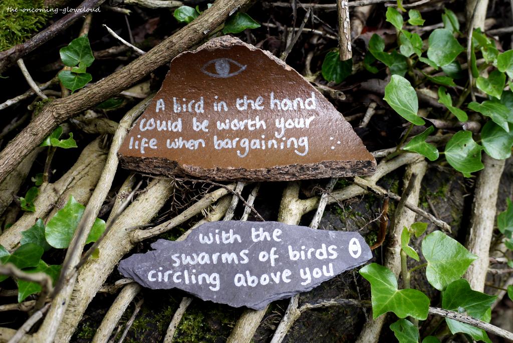 The Birds Demand by Rhiallom