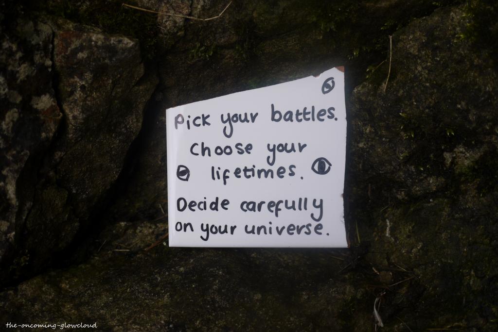 Pick Your Battles by Rhiallom