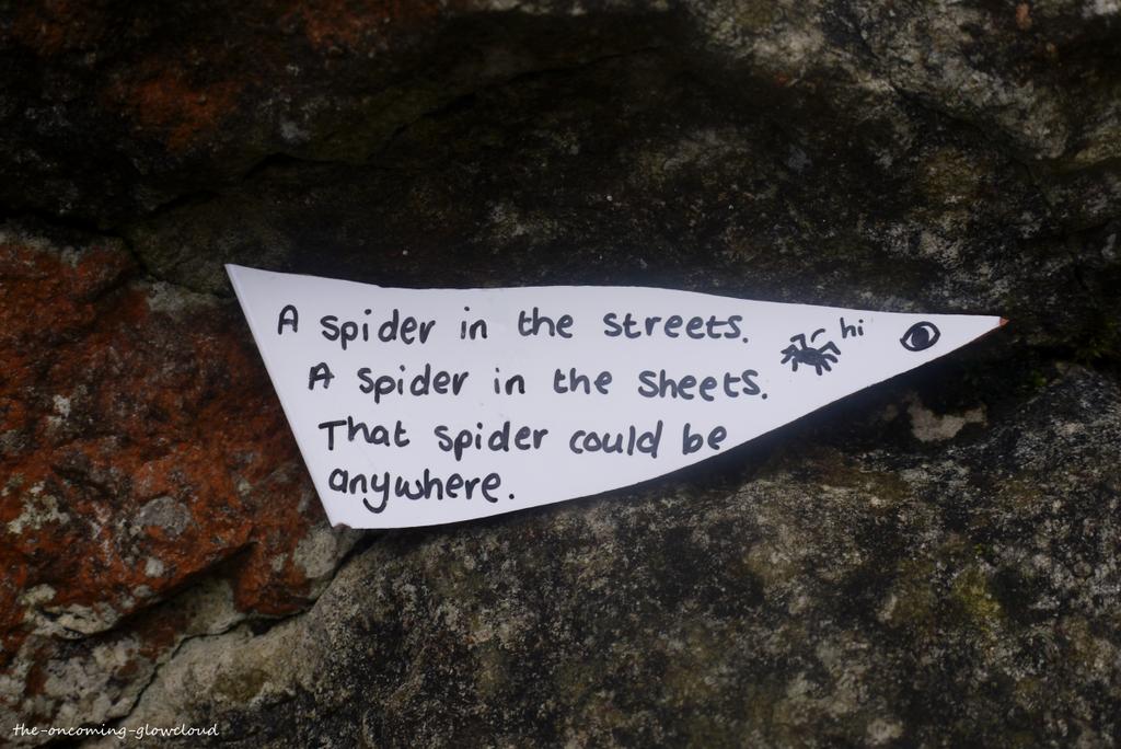 Spider Spider by Rhiallom